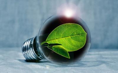 GreenIn – GREen ENtrepreneurship and INnovation
